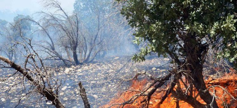 خطر آتش سوزی را جدی بگیرید