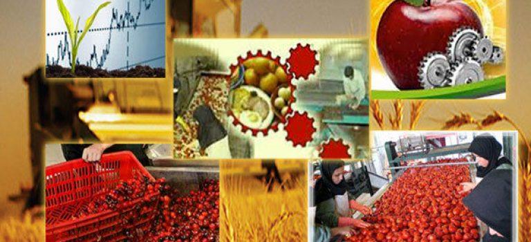 سرمایه گذاری ۷۰۰ میلیاردی در صنایع تبدیلی و غذایی فارس