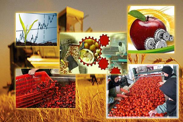 سرمایهگذاری 700 میلیاردی در صنایع تبدیلی و غذایی فارس